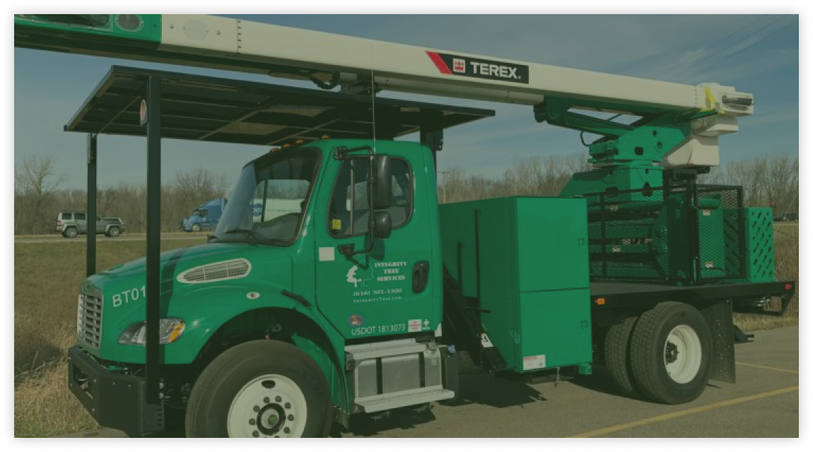 tree service using bucket truck