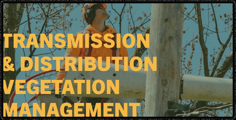 vegetation management company