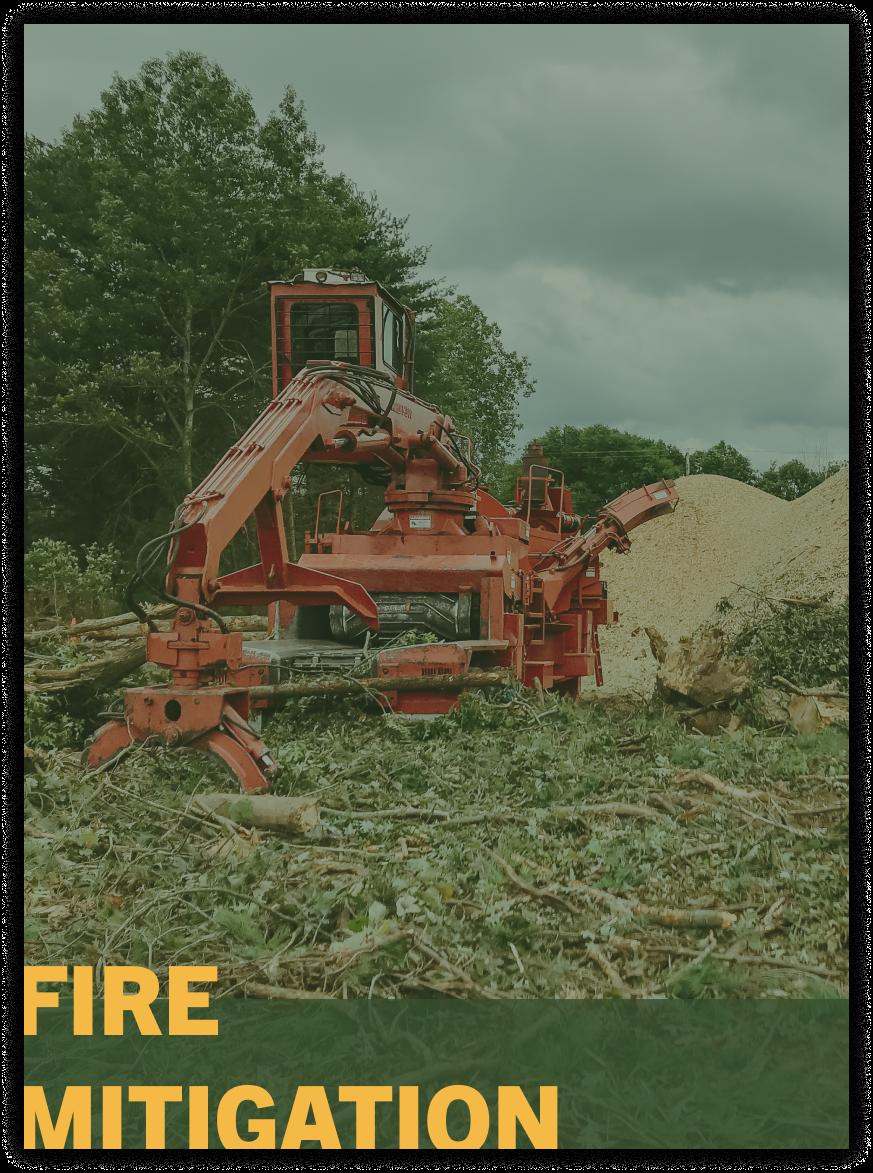 fire mitigation tree trimming service