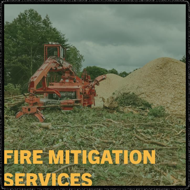 fire mitigation service company