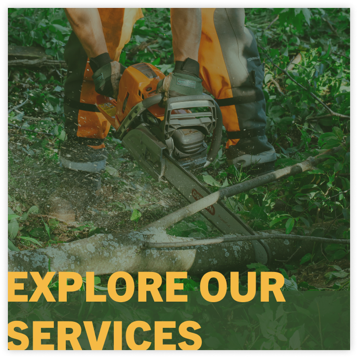 integrity tree services