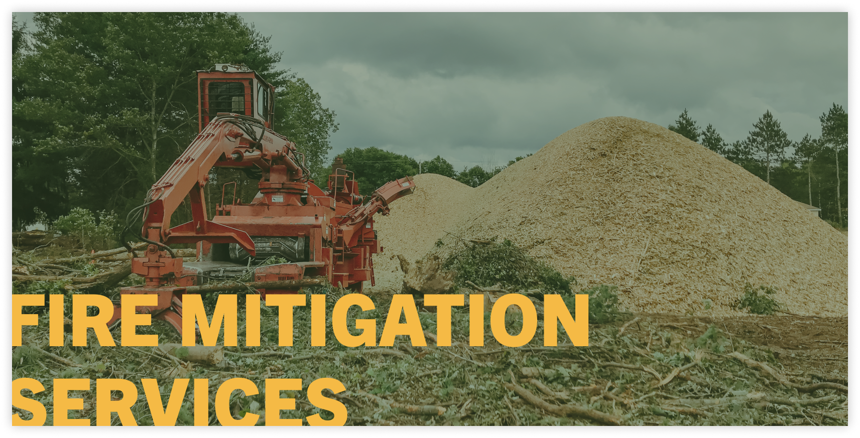 tree clearing service fire mitigation