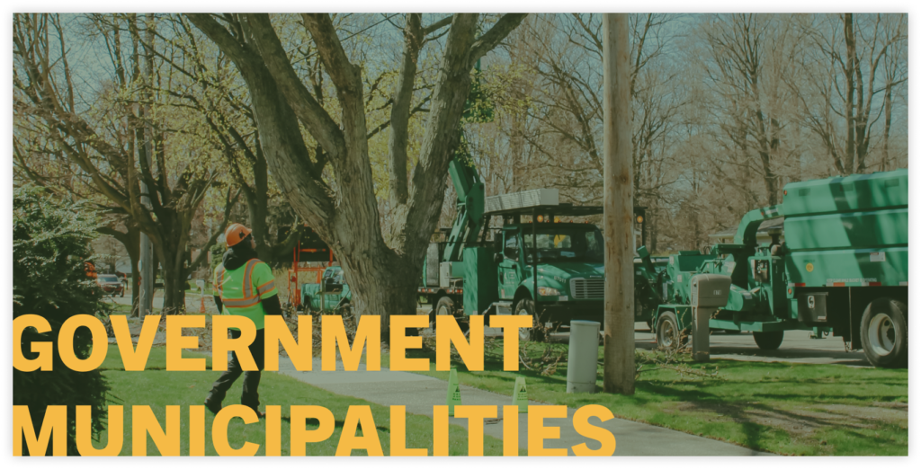 tree clearing for government municipalities